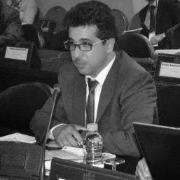 محمد أمين المحفوظي