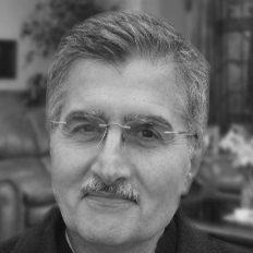 Ali Safavi Headshot
