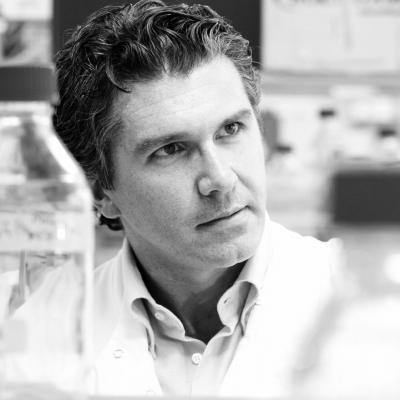 Dr. Francesco Del Galdo
