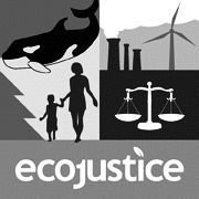Ecojustice Headshot