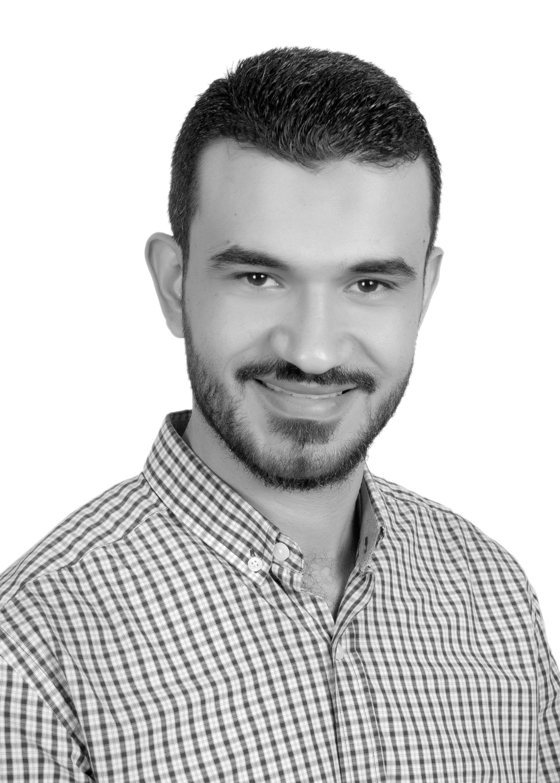 محمد حسن الحكيم