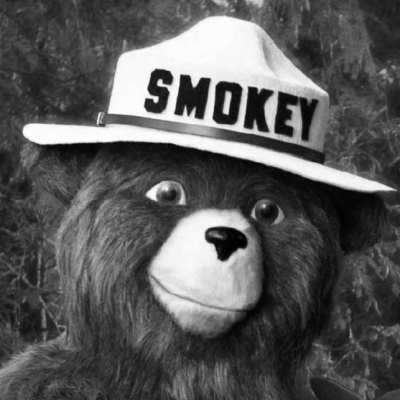 Smokey Bear Headshot