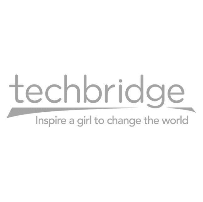 Techbridge Girls