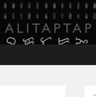 The Alitaptap Collective