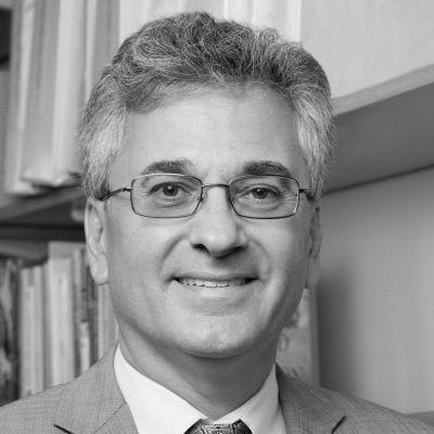 Vincent N. Schiraldi