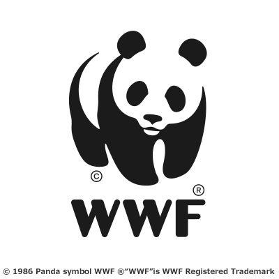 WWFジャパン Headshot